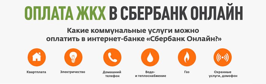 Процесс обмена рублей на perfect money eur с помощью пластиковой карты сбербанка maestro